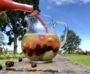 Pineapple Splash Sangria
